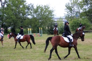 Reiterfest-2014-09