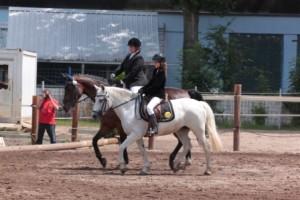 Reiterfest-2014-23