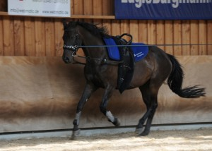 trainingslager2015 04